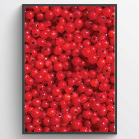 #1 Red berries - poster väggdekor
