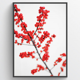 #2 Red berries - poster väggdekor